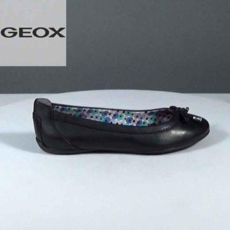 Γυναικεία Μπαλαρίνα Geox Δέρμα Μαύρο J1081.D32Y7A.D